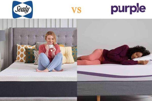 purple mattress vs sealy
